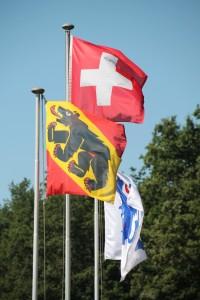 flaggen-1